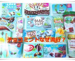 チョコミントがなぜ流行!何歳から食べれるの?色が青い理由は?1