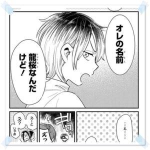 ヤンキーショタとオタクおねえさんのあらすじが面白い 龍桜