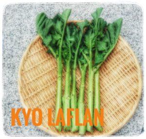 京ラフランって?京都大学で生まれた野菜!食べ方や旬、レシピも解説1