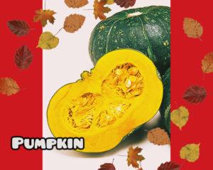 かぼちゃはいつの野菜?美味しい産地や季節はいつ?安い時期も1