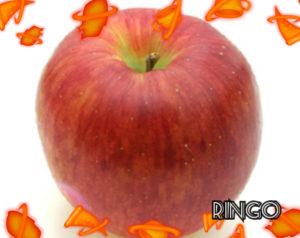 シナノスイートのりんごには特徴がある?日持ちや美味しい食べ方も2